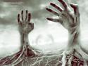 Tapeta Hands