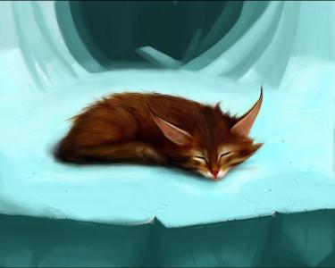 Tapeta: Tichý spánek