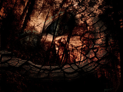 Tapeta: Abstract wood hate