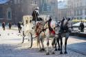 Tapeta Adventní Krakow