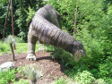 Tapeta Apatosaurus