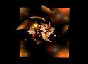 Tapeta apokvěty