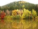 Tapeta Barevný podzim 1