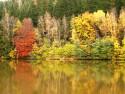 Tapeta Barevný podzim 2