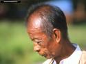 Tapeta Barma 1
