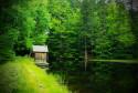 Tapeta Bavorský les 1