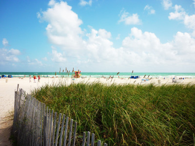 Tapeta: Beach
