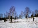Tapeta Brrr - zima ze Švédska 12