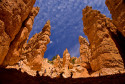 Tapeta Bryce Canyon
