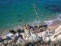 Tapeta Calella-malý útes 1