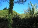 Tapeta Calella-zákoutí 3