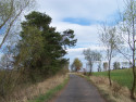 Tapeta Cesta jarní krajinou