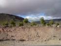 Tapeta Cesta k Sierra Nevada