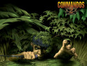 Tapeta Commandos 2 # 6