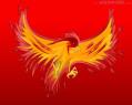 Tapeta ConWare Phoenix