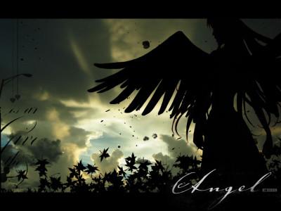 Tapeta: dark angel