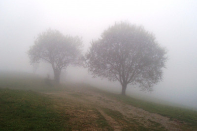 Tapeta: mlha