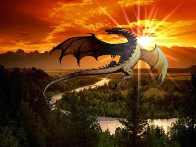 Tapeta: drak