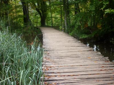 Tapeta: Dřevěná cesta