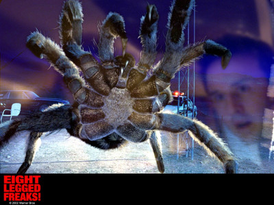 Tapeta: Eight Legged Freaks