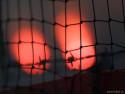 Tapeta Fotbalový plot