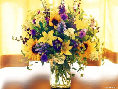 Tapeta: Fotografie květin 15