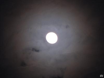 Tapeta: Halo Moon 2