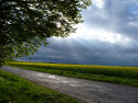 Tapeta Jaro před bouřkou