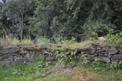 Tapeta: Kamenná zídka