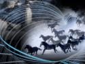 Tapeta Kompozice s koňským stádem