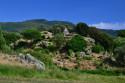 Tapeta Korsika19