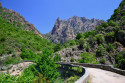 Tapeta Korsika22