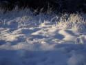 Tapeta Kouzlo zimy