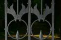 Tapeta Kovaná brána - detail 2