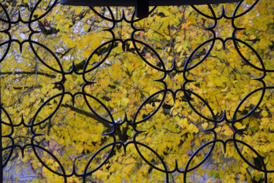 Tapeta: Kovaná mříž