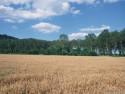 Tapeta Krajina Piemonte
