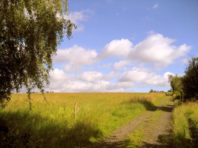 Tapeta: Krajina15