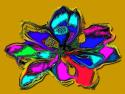 Tapeta krajina-květ