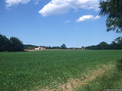 Tapeta: Krajina Piemonte 3