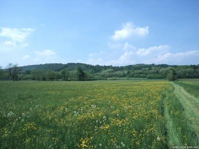 Tapeta: Krajina Piemonte 7