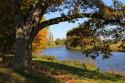 Tapeta Krajina-podzim