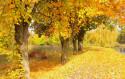 Tapeta Krajina-podzim2
