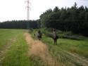 Tapeta Krajina u Druztové-Plzeň sever
