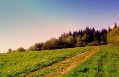 Tapeta: krajinou1