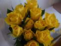 Tapeta Krása růží