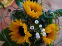 Tapeta Krása slunečnic