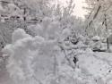 Tapeta Krása zimy