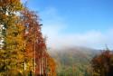 Tapeta krásy podzimu
