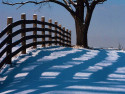 Tapeta Krásy zimy 11