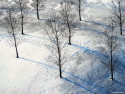 Tapeta Krásy zimy 12